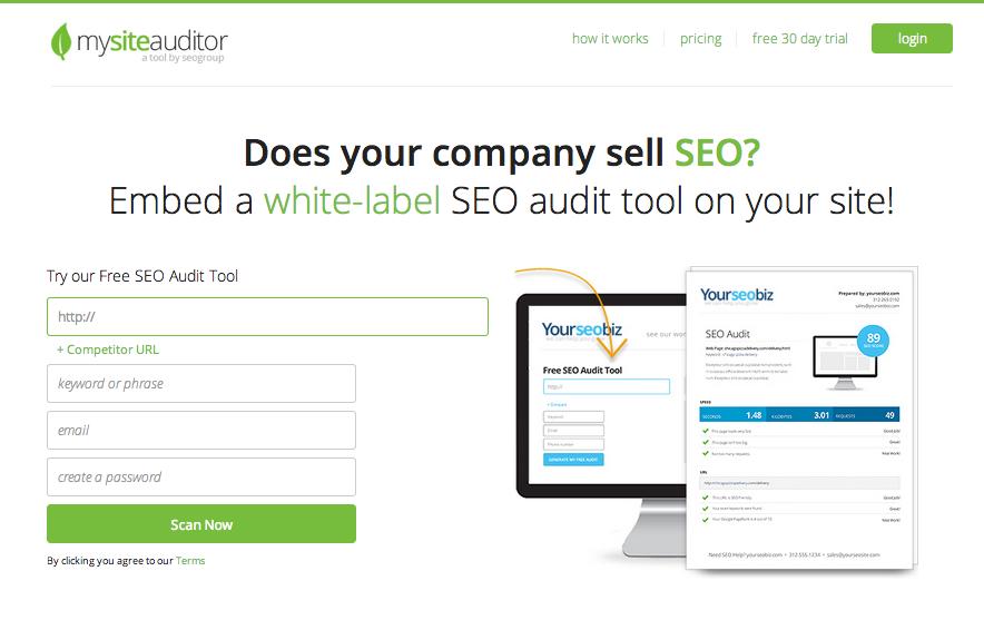 Free Website Auditor