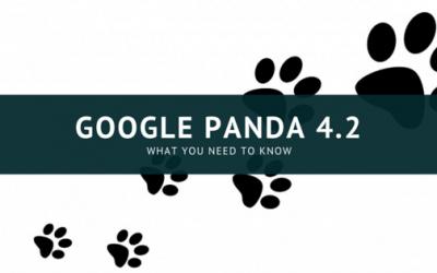 Google Rolls Out Panda 4.2 Update