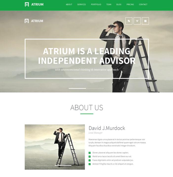 agency-wordpress-theme
