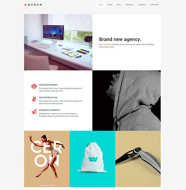 website-wordpress-themes