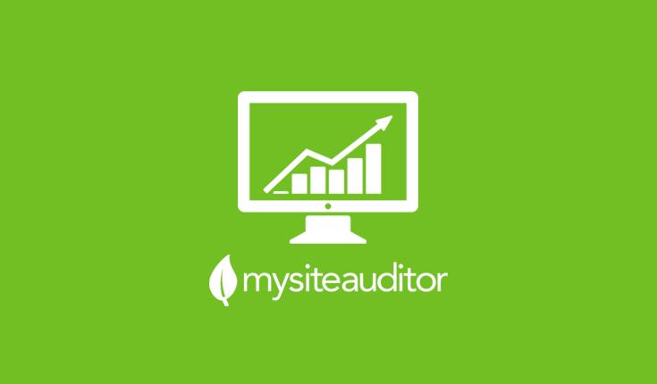 SEO leads MySiteAuditor